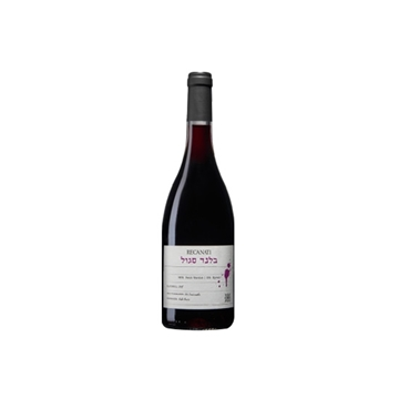 Picture of Carmel Shiraz Kayoumi (750 ml.)